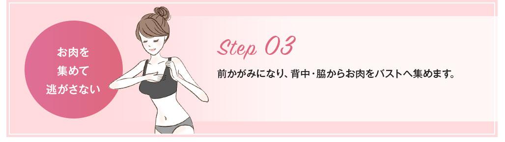 Step03お肉を集めて逃がさない